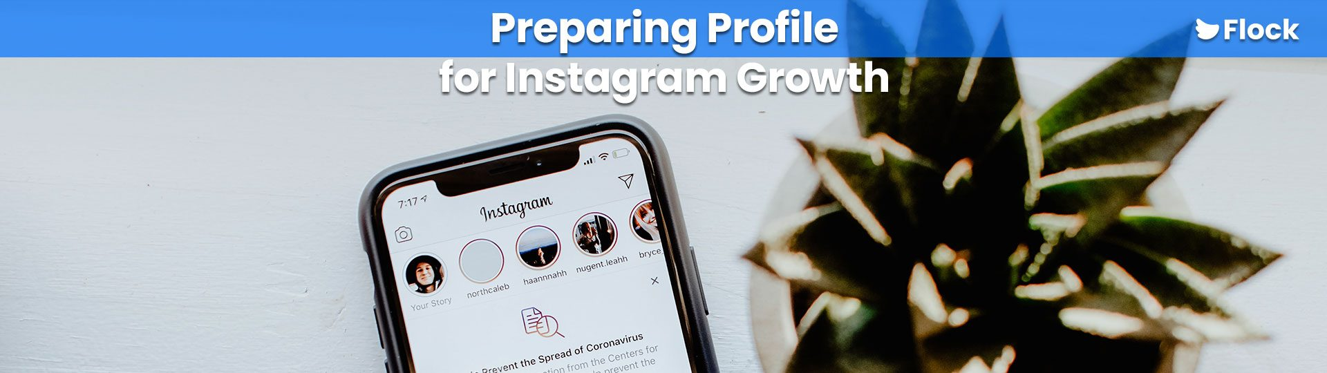 Prepare Your Profile For Instagram Growth